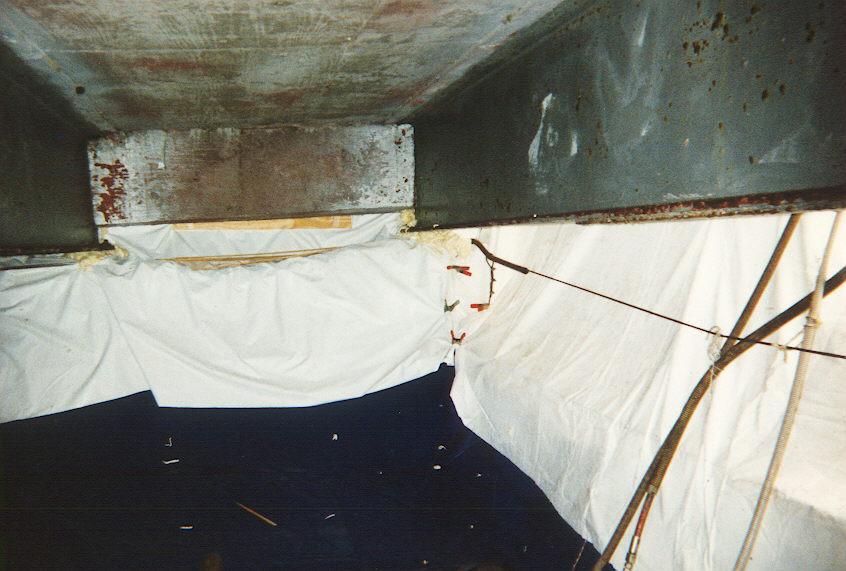 Environmental Safety under Boca Raton Bridge.jpg