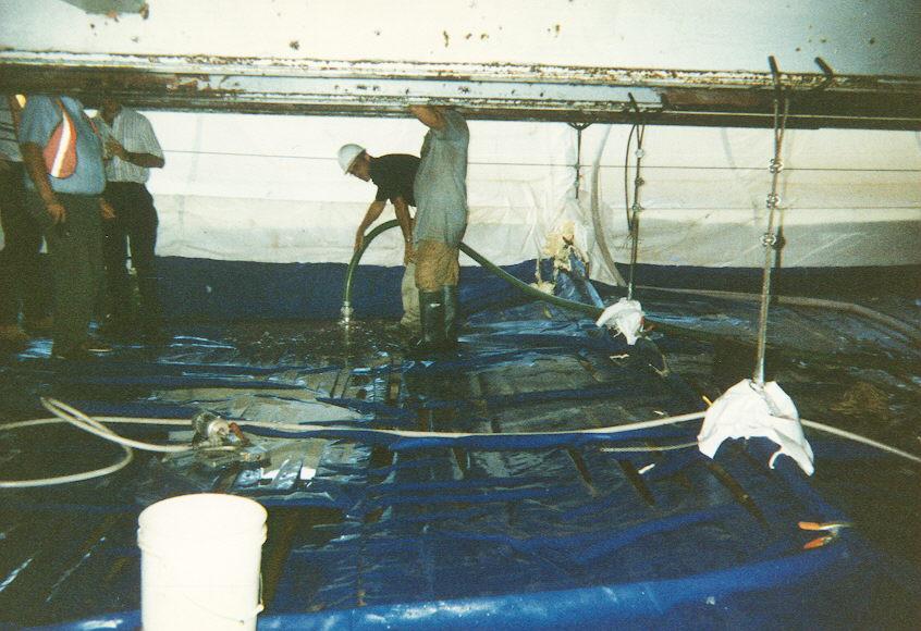 Worker and environmenal safety under bridge.jpg